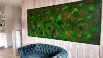 hotel-bialy-kamien-green-project
