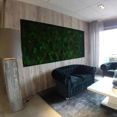hotel-bialy-kamien-green-project2
