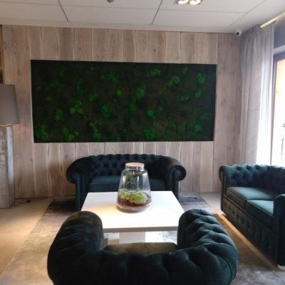 hotel-bialy-kamien-green-project4