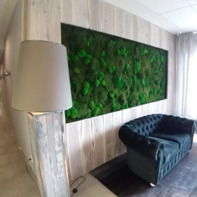 hotel-bialy-kamien-green-project8