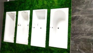 showroom-lodz-green-project1
