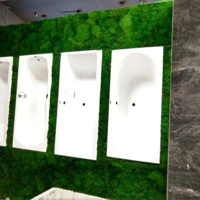 showroom-lodz-green-project1