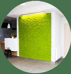 zielone wnętrza
